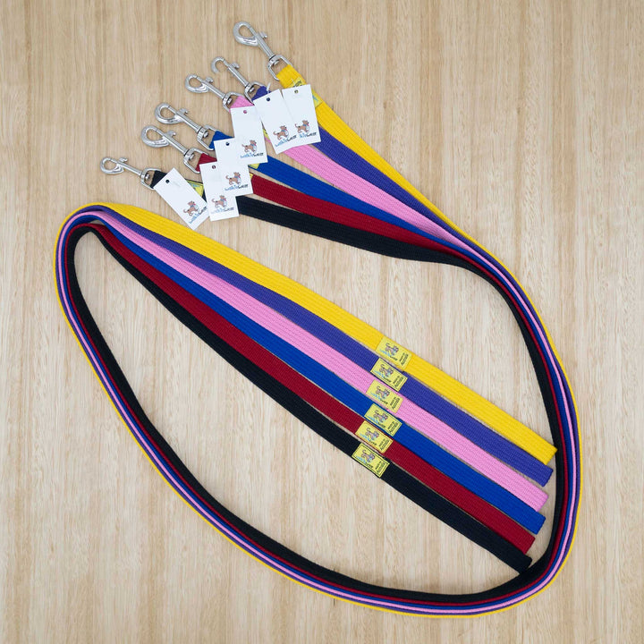 20mm x 2 metre Webbing Lead with Medium Clip - Give Paws