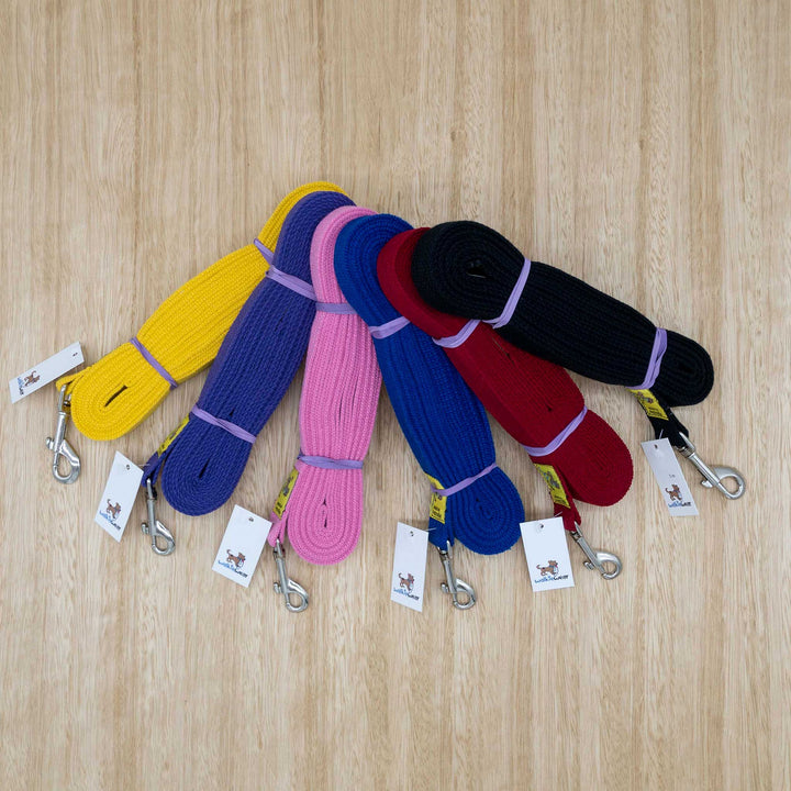 25mm x 5 metre Webbing Lead with Medium Clip - Give Paws