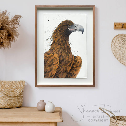 'Wesley' the Wedge-tailed Eagle