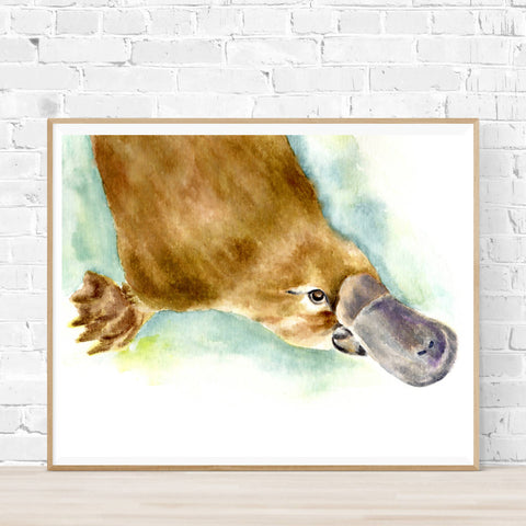 Pete the Platypus Print