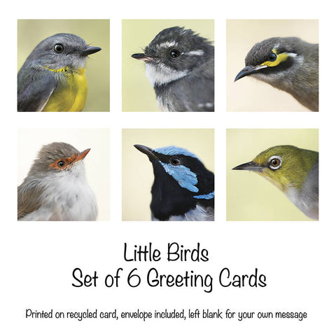 Little Birds - Set of 6 Greeting cards