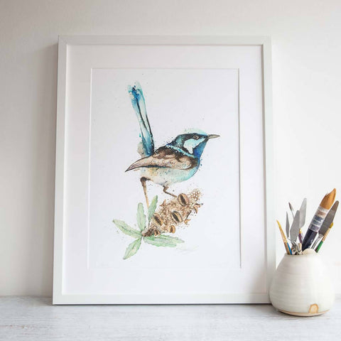 Framed fairy wren print by SEA
