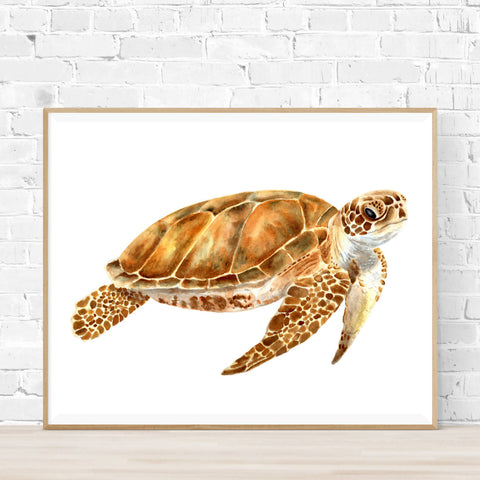 Leo the Sea Turtle Print