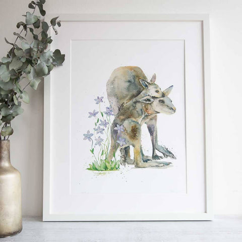 Royal bluebell framed watercolour kangaroo print