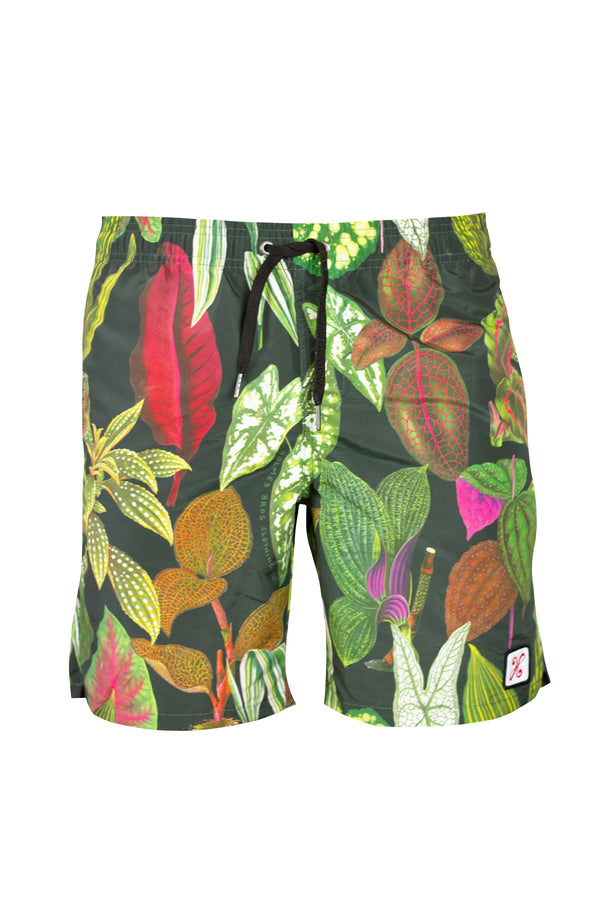Greenhouse Swim Shorts