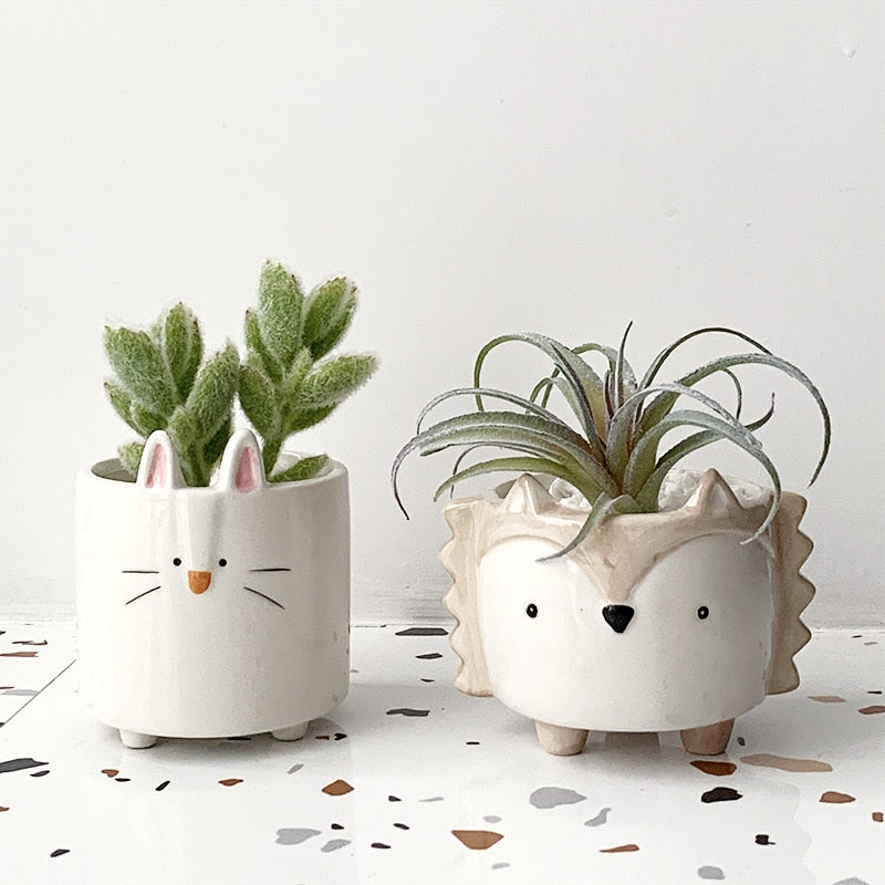 Era Cute Hedgehog Succulent Ceramic Pot