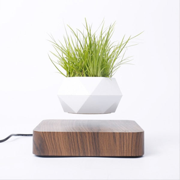 Levitating Air Bonsai Pot Rotation Flower