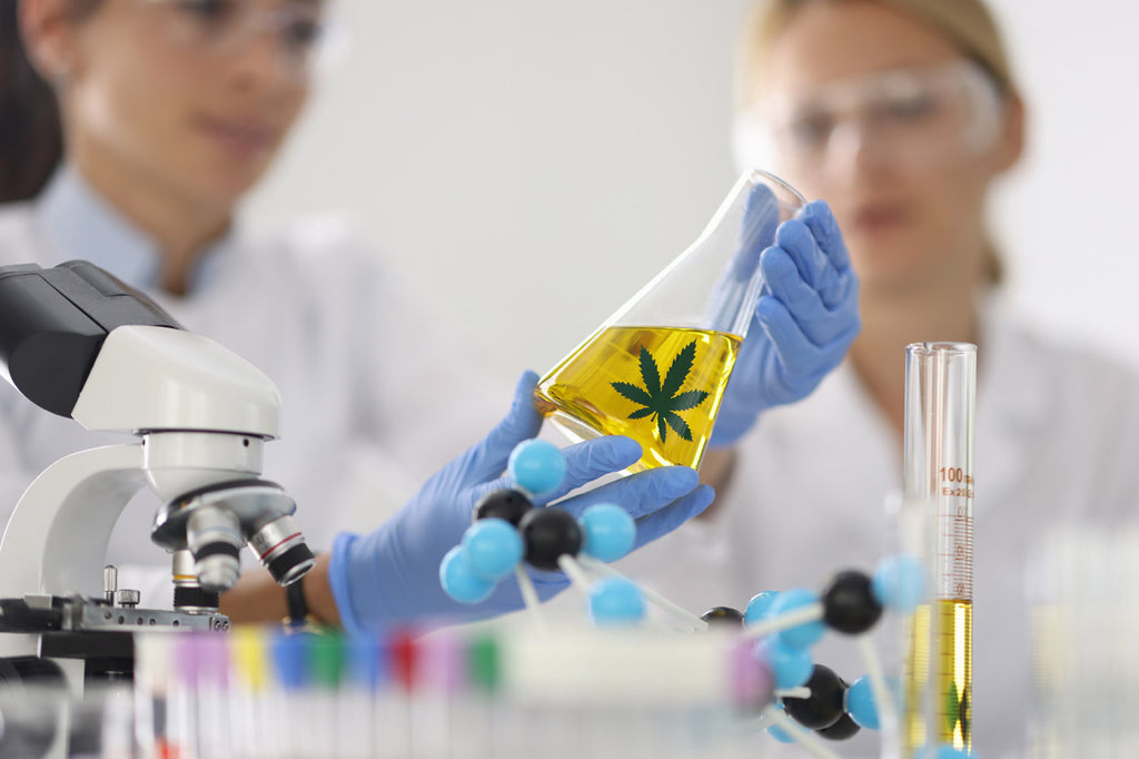 Primabee Premium CBD Hemp Oil being lab tested by a third party