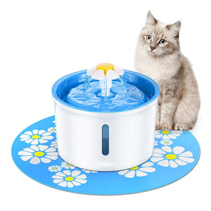 Cat Fountain Drinking