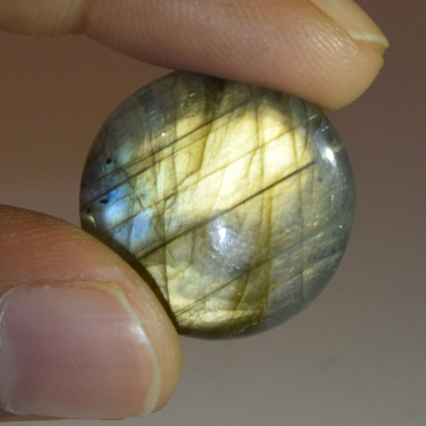Rainbow Color Natural Labradorite Loose Gemstone 21.00 Ct. Brilliant Round Cabochon EGL Certified Labradorite Gemstone Jewelry Making DG-419
