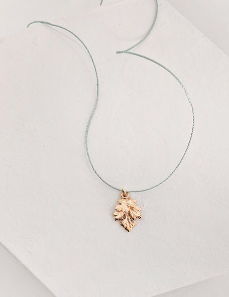 Herb Necklace on Cord - My Super Hot Deals