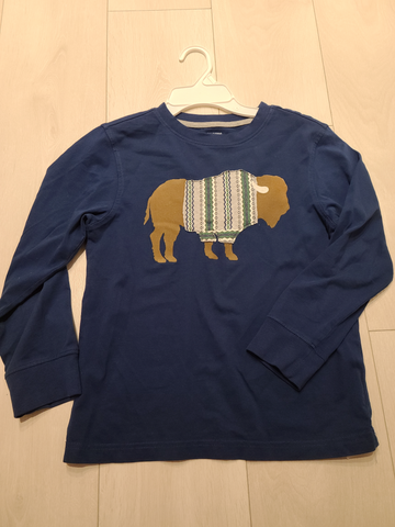 Gymboree Youth Top Size 8