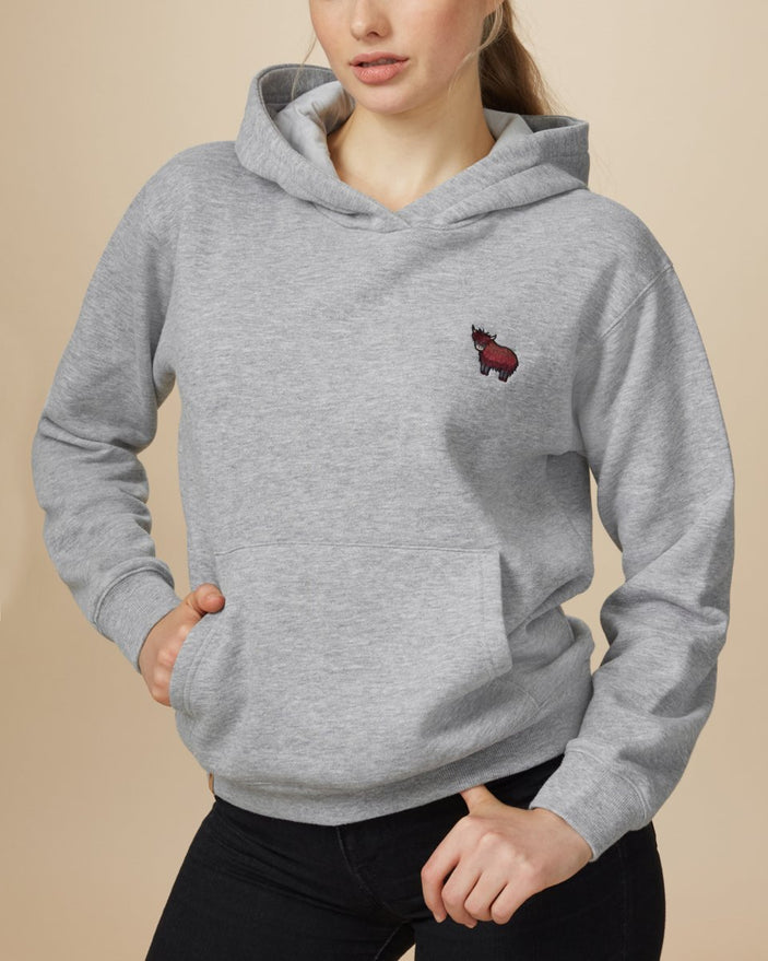 Image of product: Nepal Embroidered Yak Boyfriend Hoodie