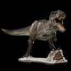 T-rex: The Tyrant King(Limited Edition: 3000) - ecocowild