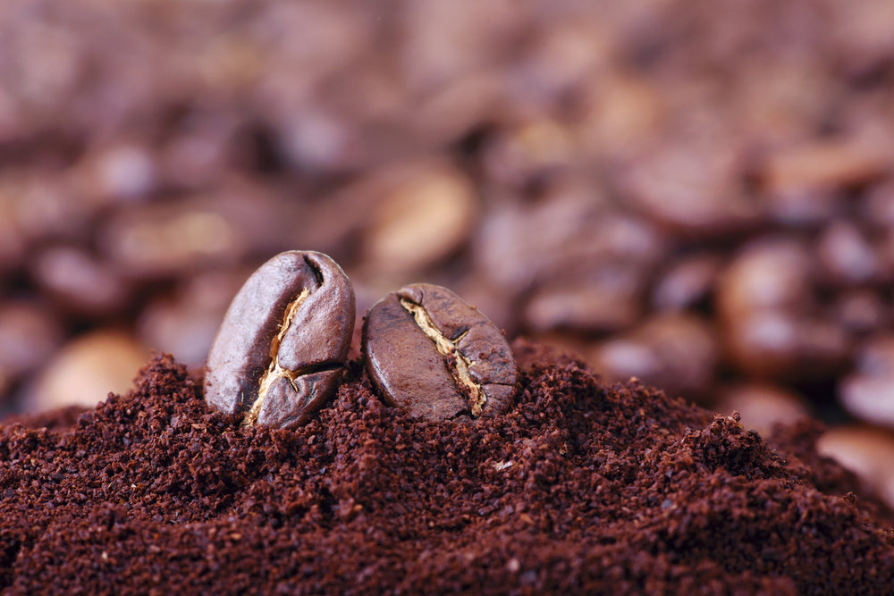 Which Coffee Grind Should You Choose?