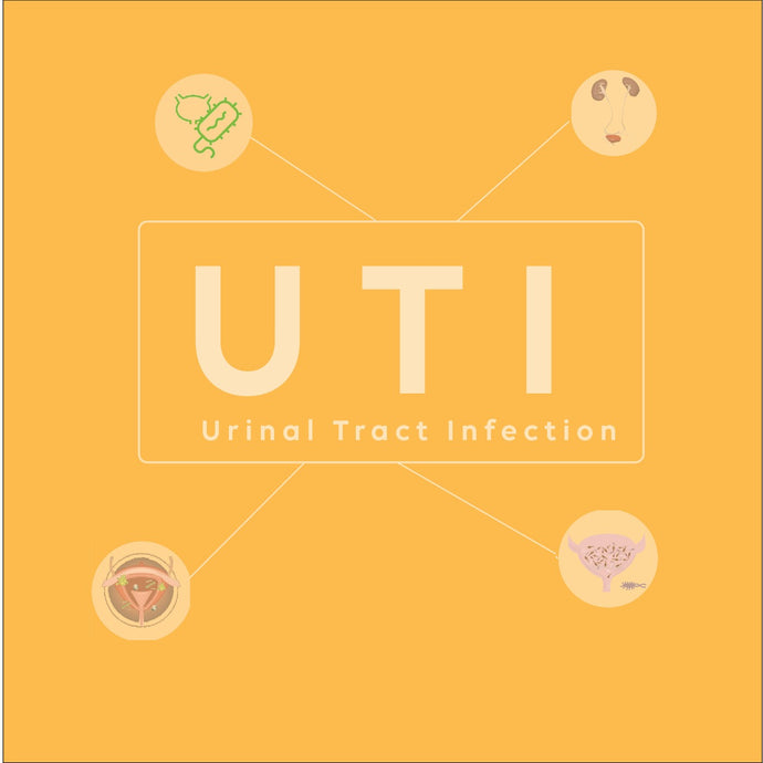 Fact Check - Urinary Tract Infections (UTIs)