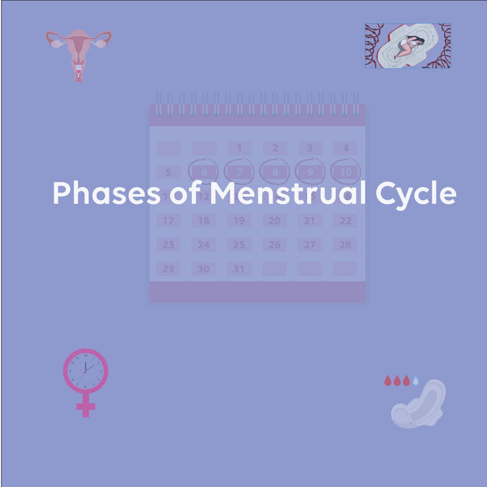 Phases of Menstrual Cycle!