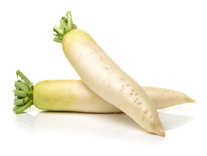 Japanese Daikon (each)