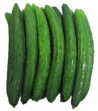 Load image into Gallery viewer, Kyuri - Japanese Cucumber (0.5 lb)