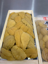 Load image into Gallery viewer, Uni (A) Large 120G Tray Japan - coming soon