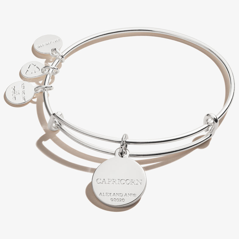 Capricorn Zodiac Charm Bangle, Color