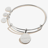 Aquarius Zodiac Charm Bangle, Color
