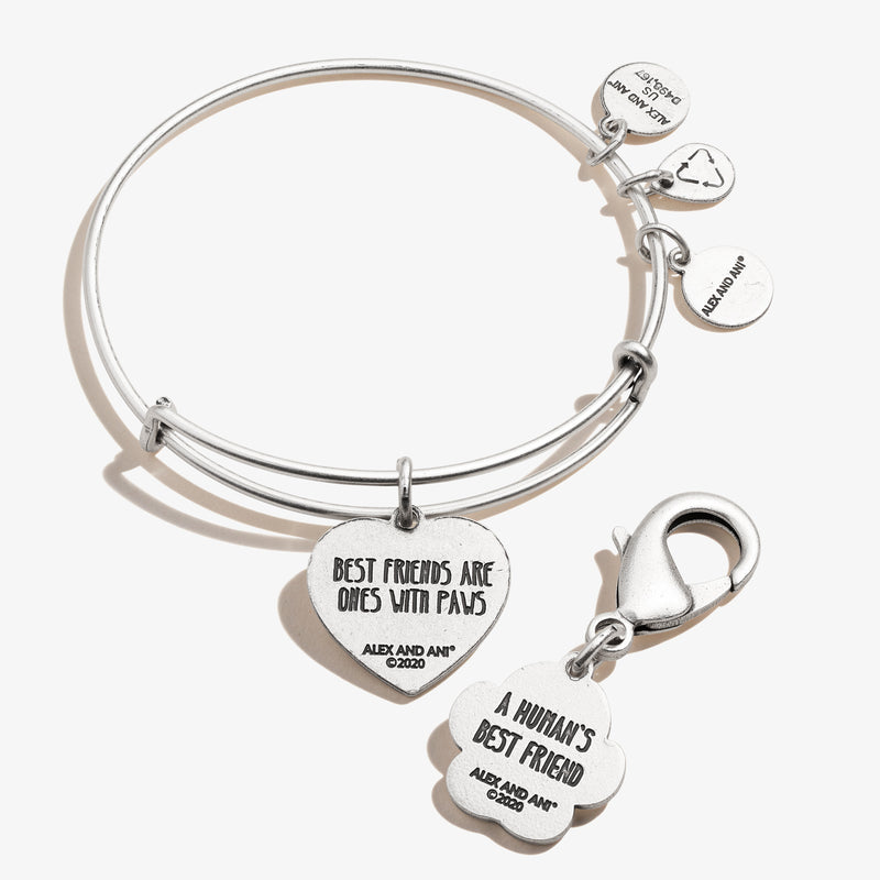 Paw in Heart Charm Bangle + Pet Collar Charm Set