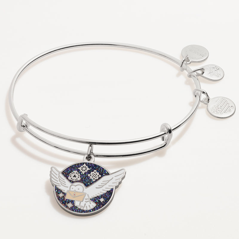 Harry Potter™ Messenger Owl Charm Bangle