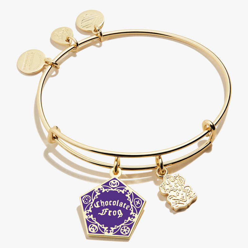Harry Potter™ 'Chocolate Frog' Duo Charm Bangle