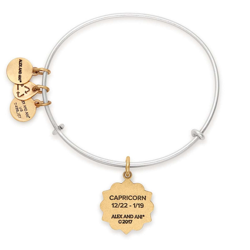 Capricorn Zodiac Charm Bangle