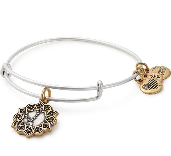 Pisces Zodiac Charm Bangle
