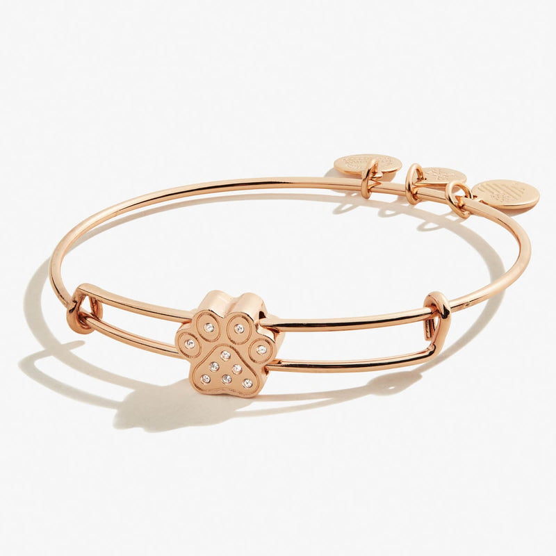 Pavé Paw Print Bead Bangle