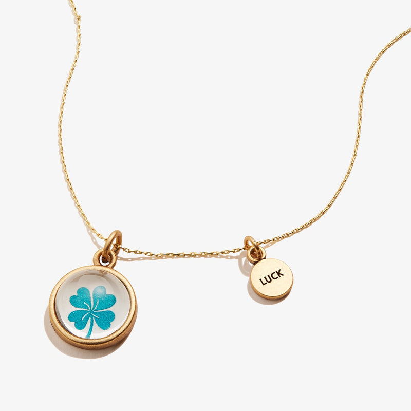 Luck Mantra Duo Charm Necklace