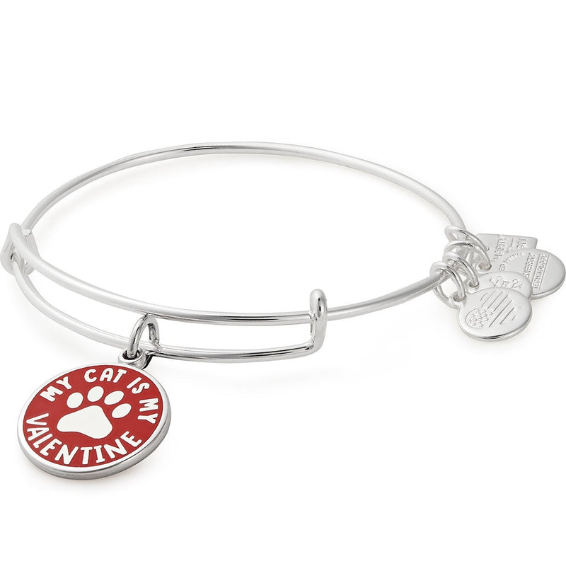 My Cat Is My Valentine Charm Bangle