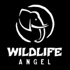 Wildlife Angel Shop