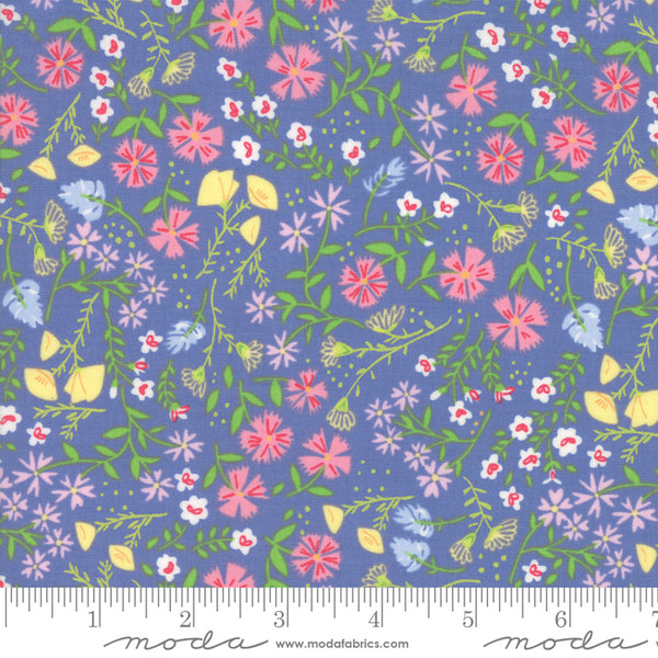 1/2m Sunday Picnic Flowers - Periwinkle