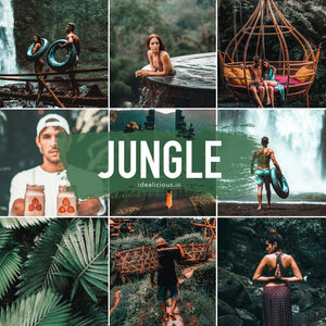 Jungle Collection