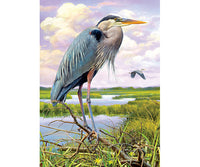The Heron sanctuary provides a peaceful place in the wetlands for these majestic birds to come and go.