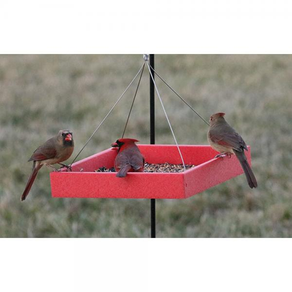 Red plastic platform feeder with drainage screen and metal hanging wires
