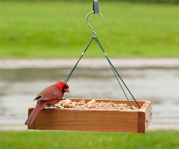 Wooden Platform Feeder to Hang, Mount on Pole or place on ground.