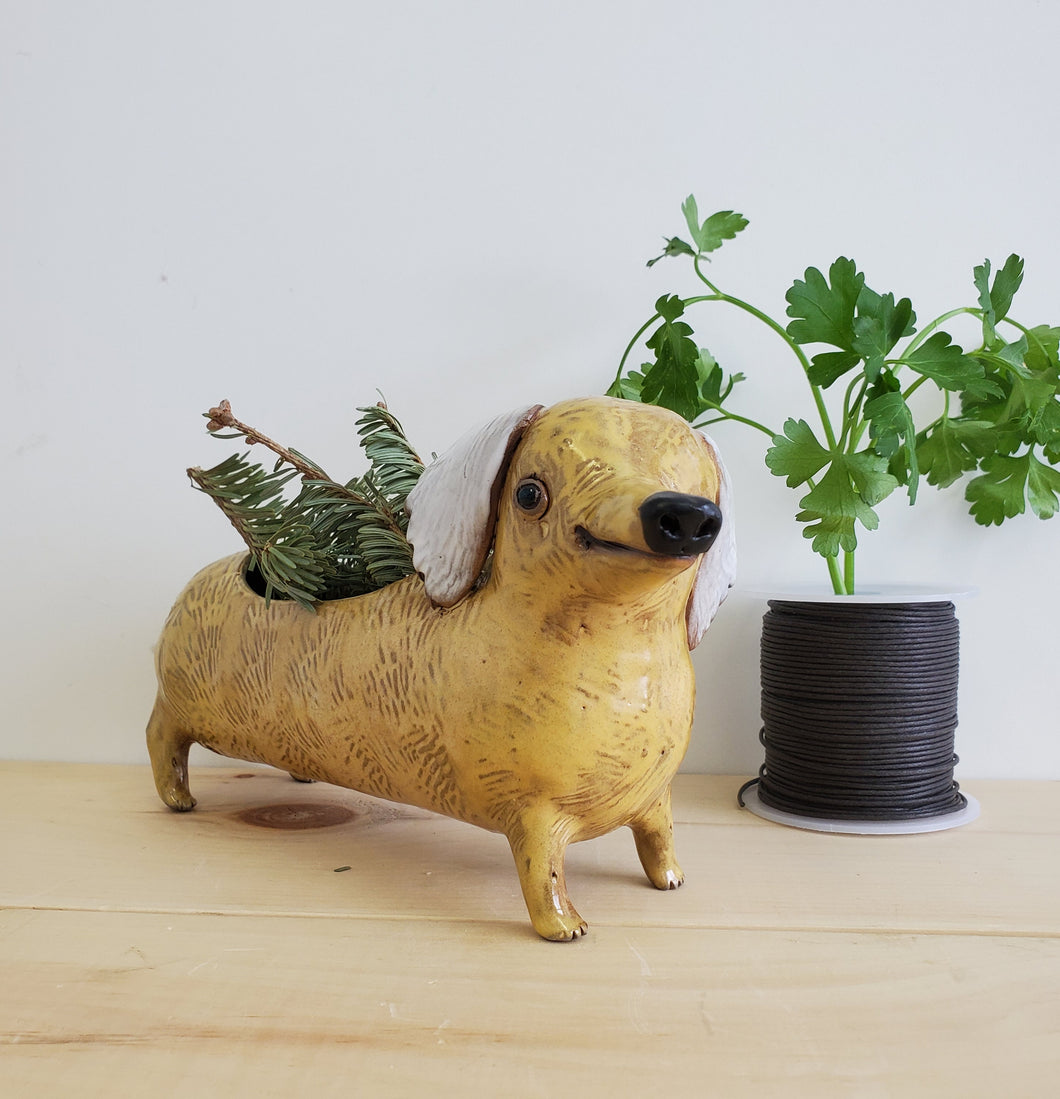 Yellow Sausage Planter
