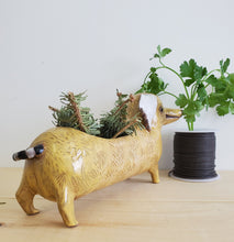 Load image into Gallery viewer, Yellow Sausage Planter