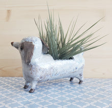 Load image into Gallery viewer, White dachshund planter