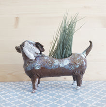 Load image into Gallery viewer, Brown spotted dachshund planter