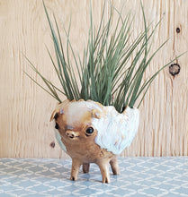 Load image into Gallery viewer, Long Legged Piggy Planter