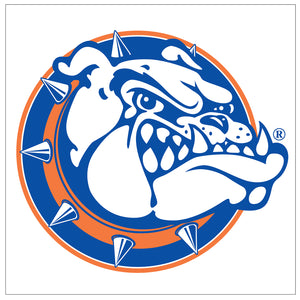 Bolles High School