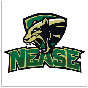 Nease High School