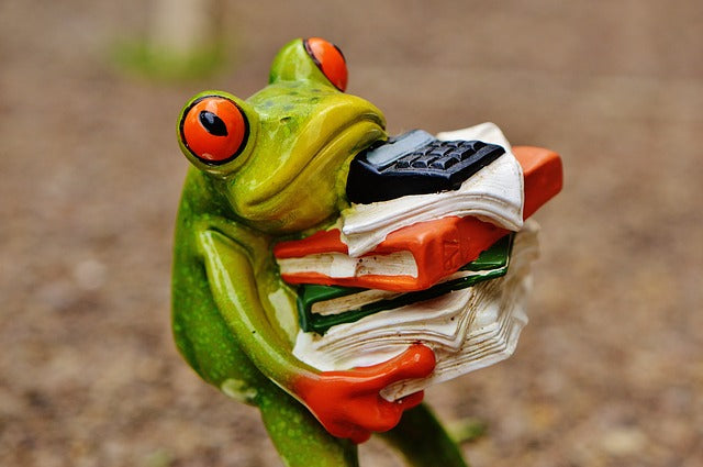 statue of frog carrying a big stack of books, papers, and a calculator