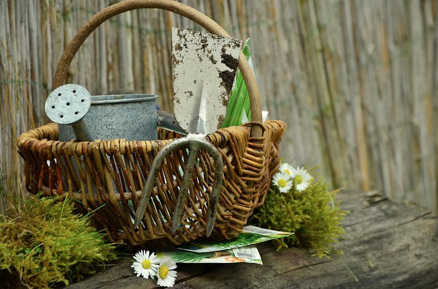 basket with gardening tools on wood surface