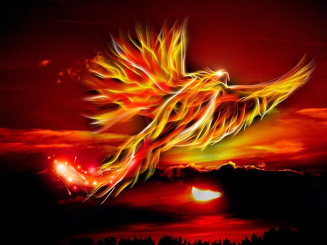 image of a fiery phoenix against background of setting sun